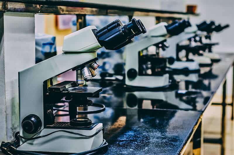 microscopes in college laboratory